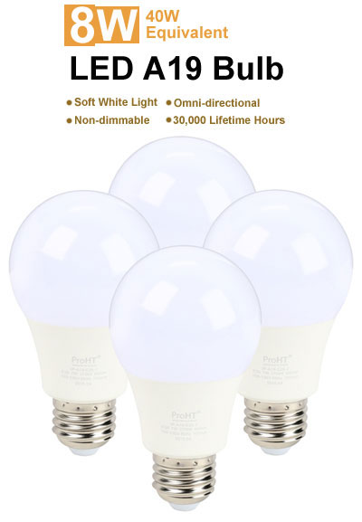picture of the bulbs