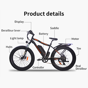 AOSTIRMOTOR Electric Bike