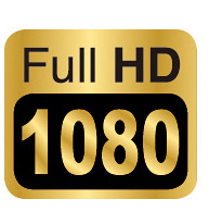 Genius DVR-FHD590 Full HD Vehicle Video Recorder
