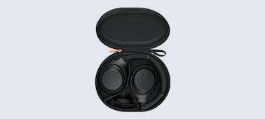 19_Carry Case with Cable