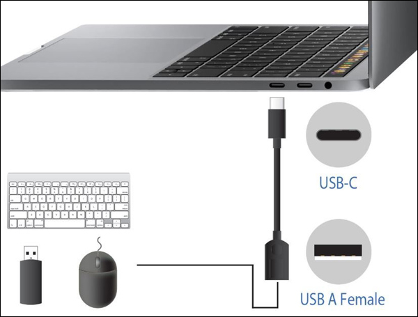 The USB-C end has a computer on display and the USB-A end has keyboard, USB flash drive, and mouse on display