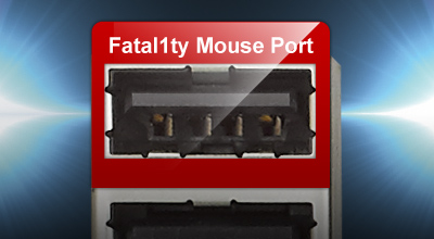 Closeup of the the Fatal1ty mouse port