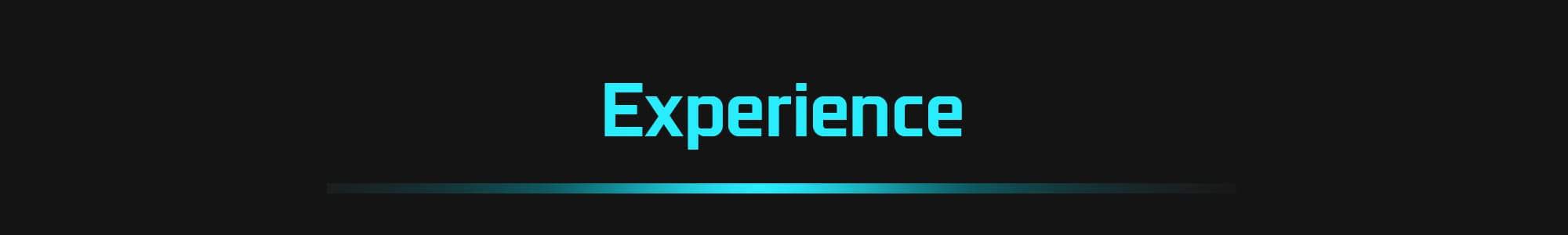 Experience-title