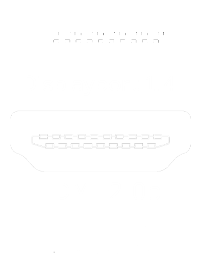 Display Port 1.4 text and port graphic, HDMI 2.0b text and port graphic, and the HDMI High Definition Multimedia Interface logo