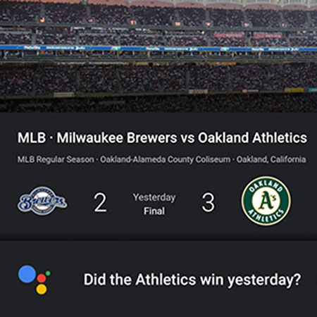 use Google Assistant to ask sports