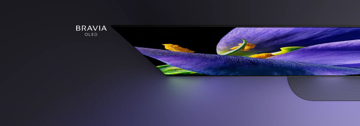 The left part of MASTER Series A9G TV is seen from airial angle, showing a purple flower in detail.