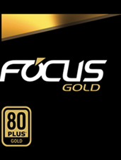 Focus+ Gold text and 80 Plus Gold Badge