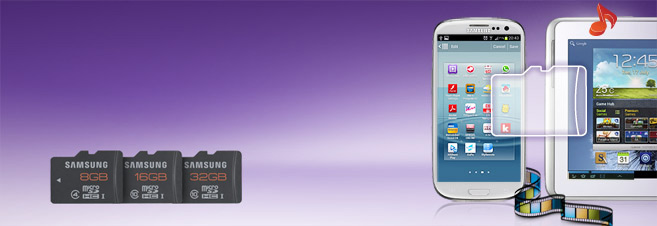 Samsung Plus SD