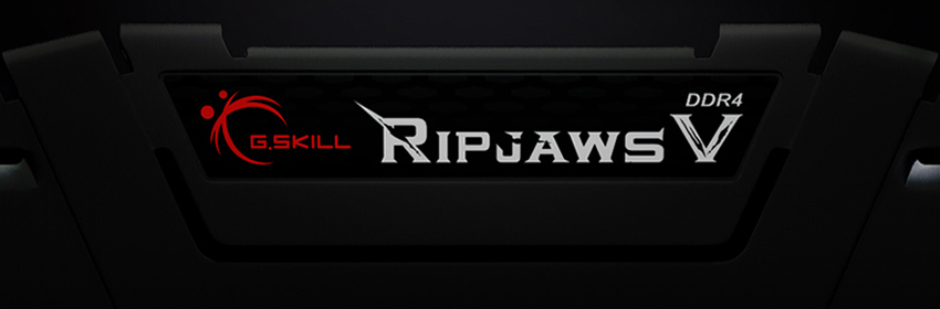 G SKILL Ripjaws V Series 16GB (2 x 8GB) 288-Pin DDR4 SDRAM DDR4 3200 (PC4  25600) Desktop Memory Model F4-3200C16D-16GVKB - Newegg com