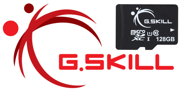 G Skill 128GB microSDXC UHS-I/U1 Class 10 Memory Card Without Adapter  (FF-TSDXC128GN-U1) - Newegg com