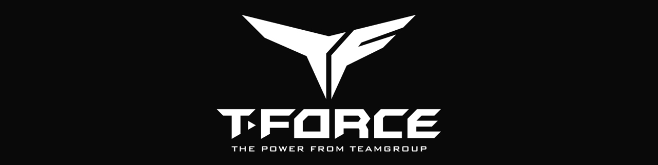 T-FORCE The Power from Teamgroup Logo
