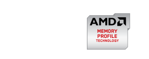 AMD Radeon™ RG2133 AG316G2130U1Q