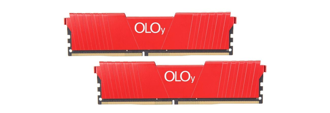 two OLOy DDR4 Memory modules