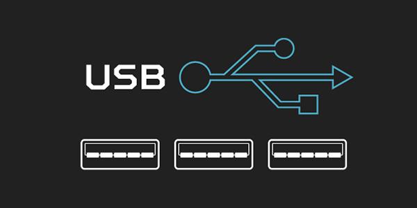 Three USB Port Graphics Under the USB Logo and Text