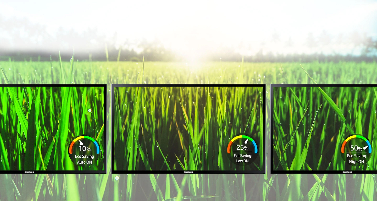 a lawn image as screen crossing three monitors as screen, showing different effect among eco saving auto on, eco saving low on and eco saving high on