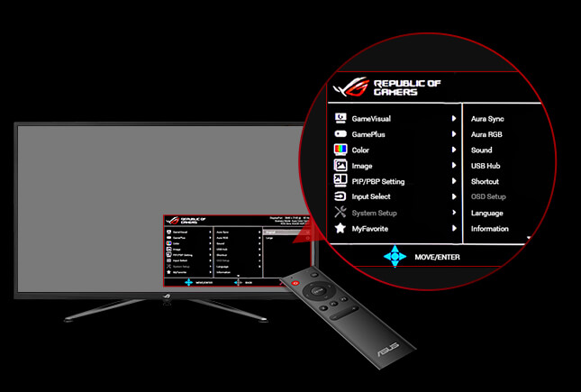 remote, a monitor with the detail of the remote control screenshot