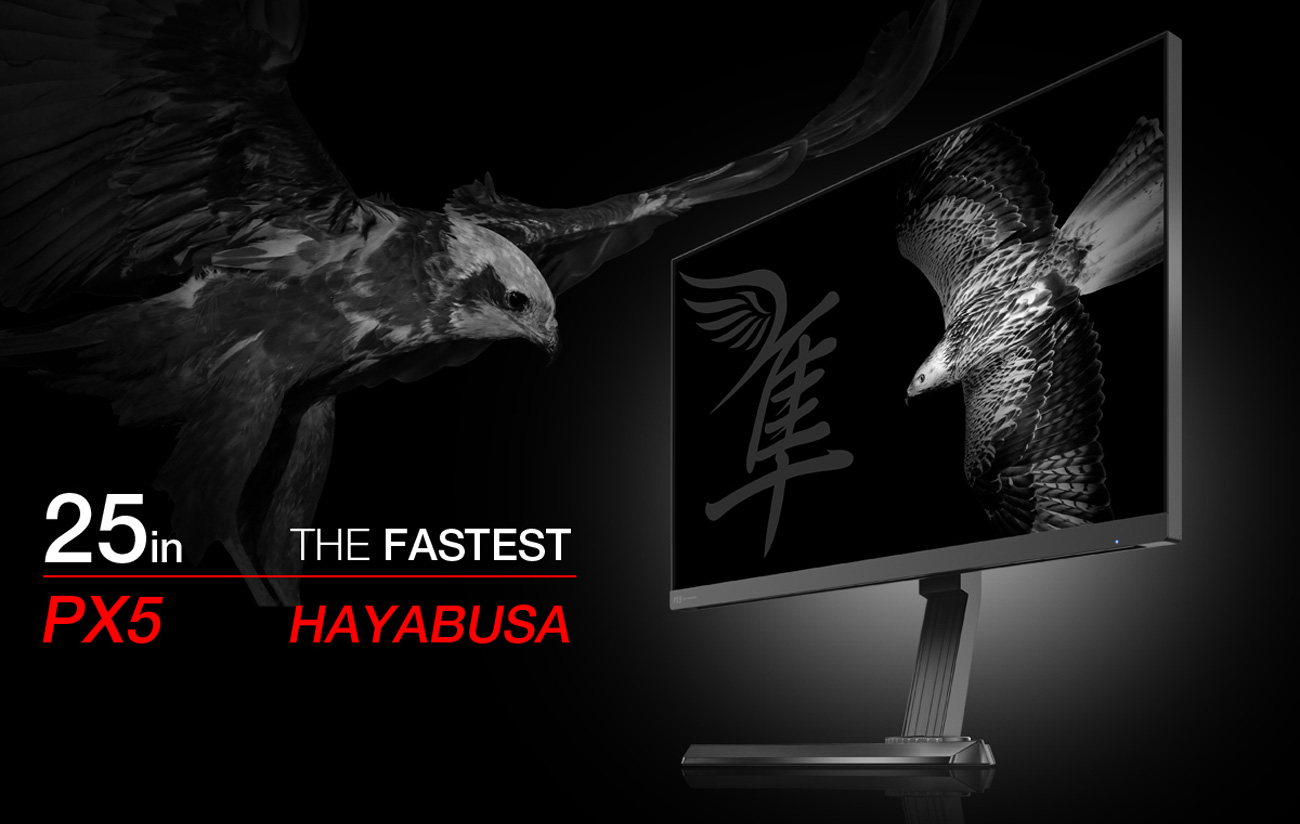 photo about Printable Hawk Silhouette for Window named Pixio PX5 Hayabusa 25\
