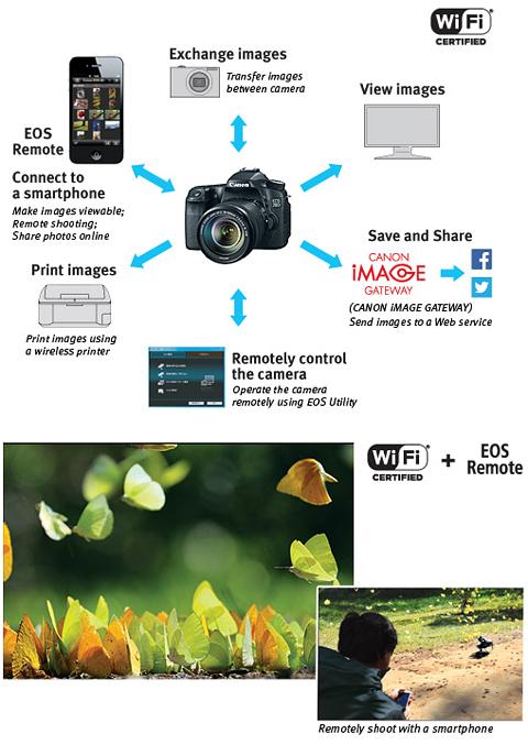 Canon EOS 70D (8469B016) Digital SLR Cameras Black Digital SLR Camera with  18-135mm STM f/3 5-5 6 Lens - Newegg com