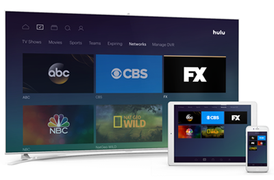 Hulu $50 00 Gift Card (Email Delivery) - Newegg com