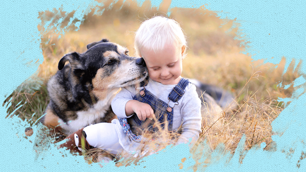 A boy closes his eyes while a puppy kiss him in the cheek in the field and the picture is added with painterly effect