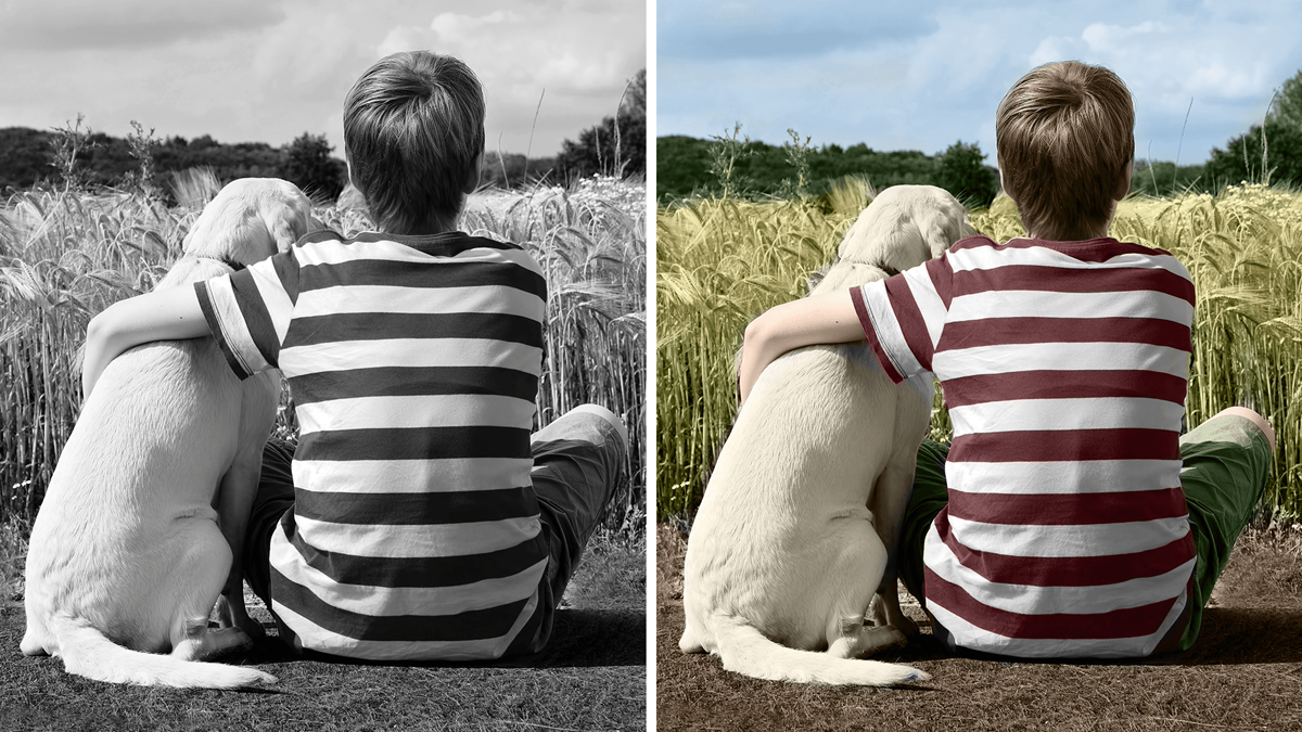 A comparison between a black and white picture and a colorized picture on which a boy is sitting with a dog with an around it