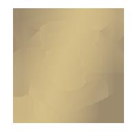 Icon - Military-Grade Durability