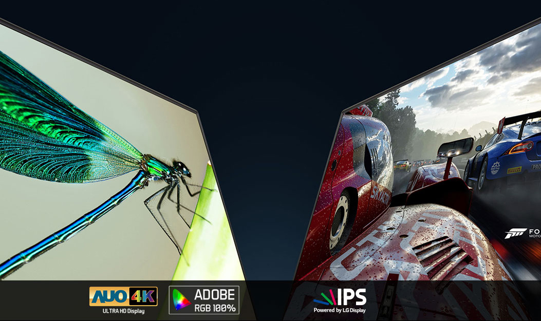 Two Aero Gaming Laptop Displays facing towards each other, one shows a highly detailed closeup of an insect on a plant and the other shows a closeup screenshot of Forza motorsport. Below the displays are logos for: AUO 4K ULTRA HD Display, Adobe RGB 100% and IPS powered by LG Display