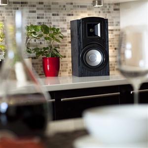 Klipsch Synergy B-20 Pair Home Audio Speaker - Newegg com
