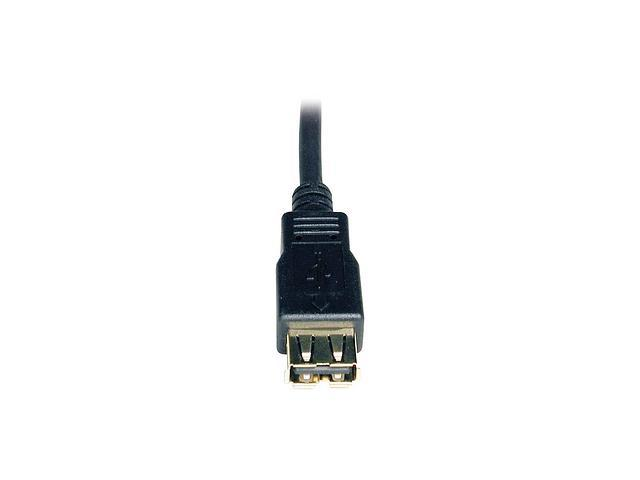 Tripp Lite U024-006 6 ft. Black USB A/A Gold Extension Cable for USB2.0 Cable