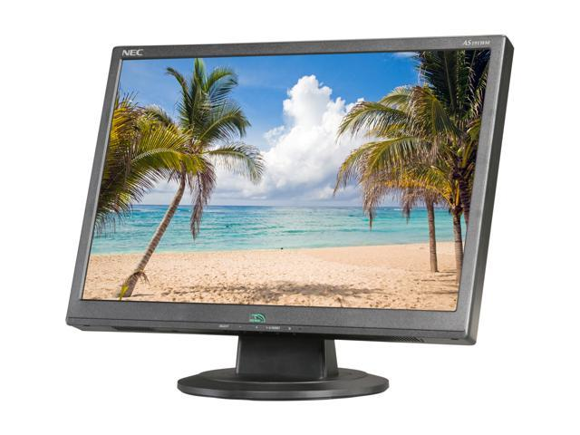 "NEC Display Solutions AS191WM-BK Black 19"" 5ms Widescreen LCD Monitor"