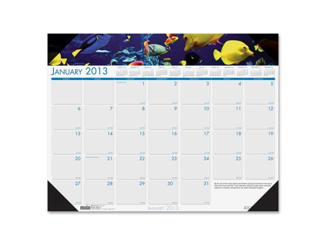 House of Doolittle 193 Sea Life Photographic Monthly Desk Pad Calendar, 22 x 17