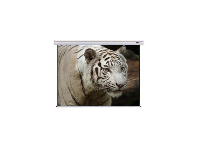 Mustang SC-E100D43 Motorized 100-Inch Projection Screen