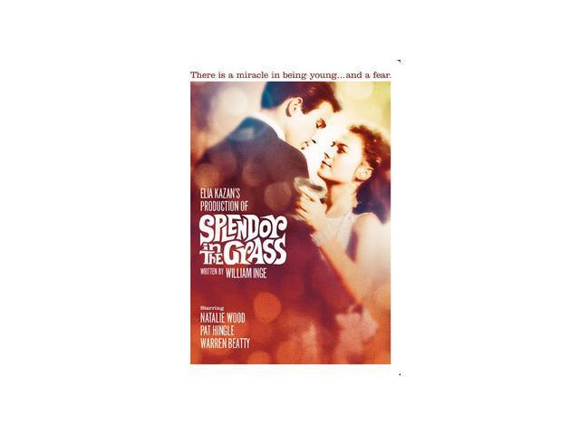 Splendor In The Grass Natalie Wood, Warren Beatty, Pat Hingle, Audrey Christie, Barbara Loden, Zohra Lampert, Fred Stewart, Joanna Roos, Jan Norris, Gary Lockwood