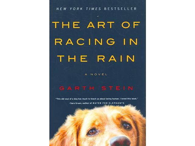 The Art Of Racing In The Rain: The Art Of Racing In The Rain Reprint