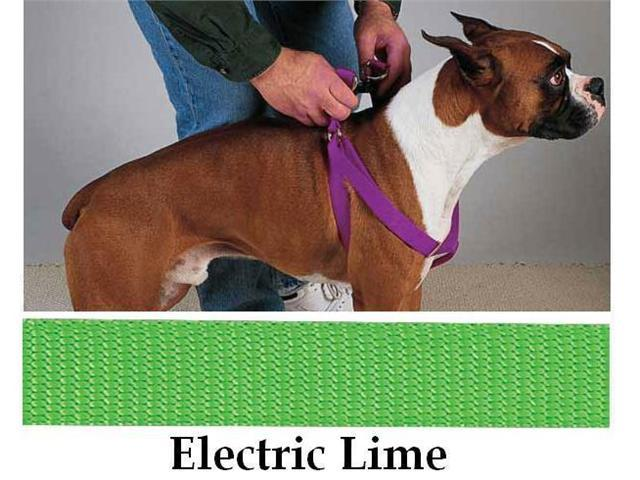 Pet Pals TP807 09 29 Guardian Gear 2 Step Harness 9-15 Electric Lime