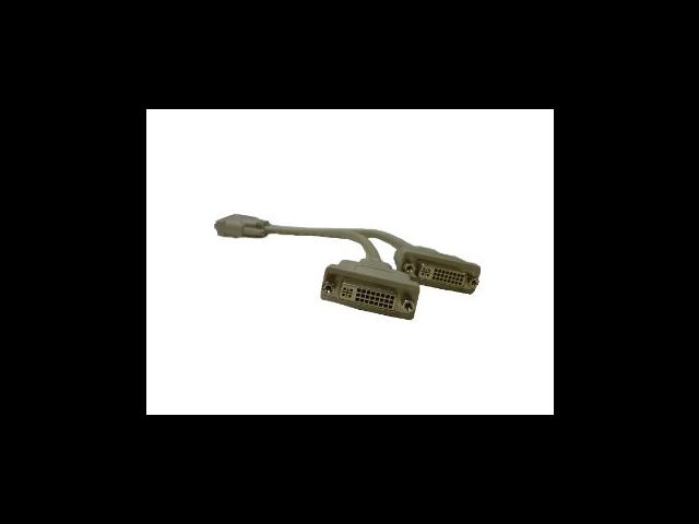 DVI-D Splitter Cable - 12 Inches - 1 x DVI Male to 2 x DVI Female