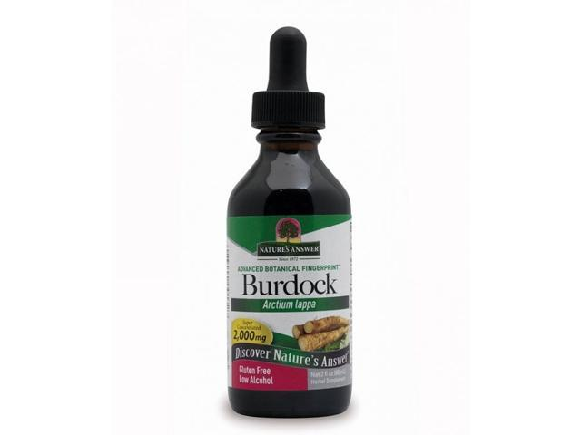 Burdock Root Extract - Nature's Answer - 2 oz - Liquid
