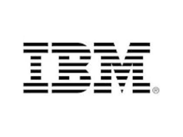 IBM 600 GB 2.5
