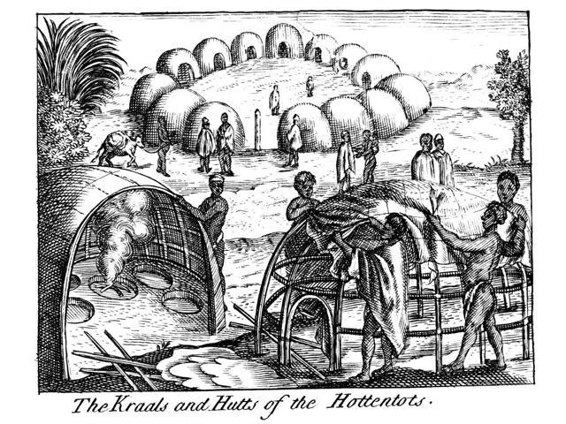 South Africa Hottetntot NThe Kraals And Hutts Of The Hottentots Khoikhoi (Hottentot) Villagers Building A Dwelling Line Engraving From An English Edition Of Peter KolbeS The Present State Of The Cape