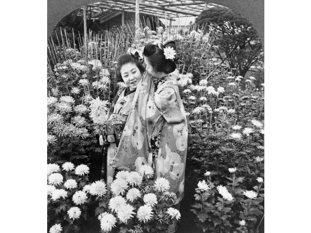 Japan Girls In Garden None Girl Whispering Into AnotherS Ear In A Chrysanthemum Garden In Japan Stereograph 1906 Poster Print by  (18 x 24)