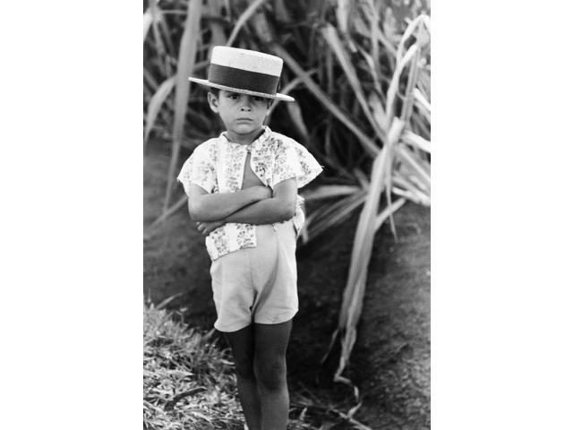 Puerto Rico Boy 1941 Nfarm Boy Along The Road Near Corozal Puerto Rico Photograph By Jack Delano December 1941 Poster Print by  (18 x 24)