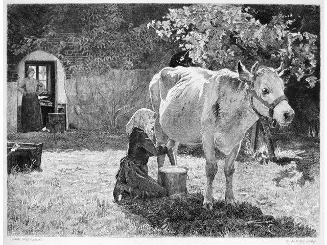 Milking 19Th Century NThe White Cow Etching French Late 19Th Century After A Painting By Julien Dupr (1851-1910) Poster Print by  (18 x 24)