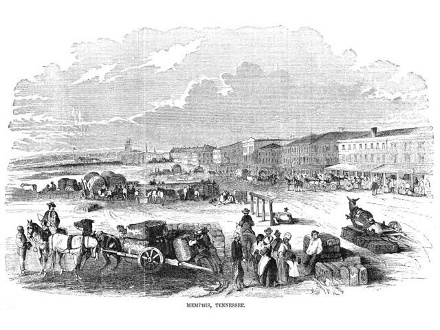 Memphis Tennessee 1855 Nbringing Cotton To The Levee At Memphis Tennessee Wood Engraving American 1855 Poster Print by  (18 x 24)