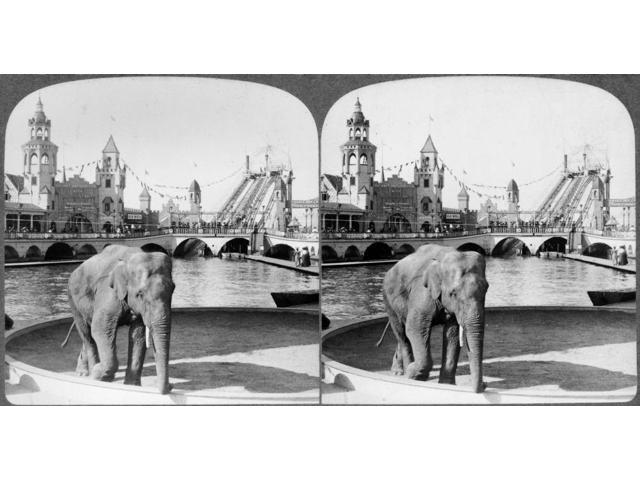 Coney Island Luna Park NThe Elephant Now Goes Round Varied Sights And Shows At Luna Park Amusement Park Coney Island Brooklyn New York Stereograph C1904 Poster Print by  (18 x 24)