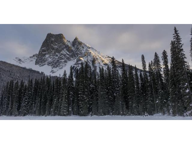 Frozen Emerald Lake in Yoho National Park British Columbia Canada Poster Print (21 x 10)