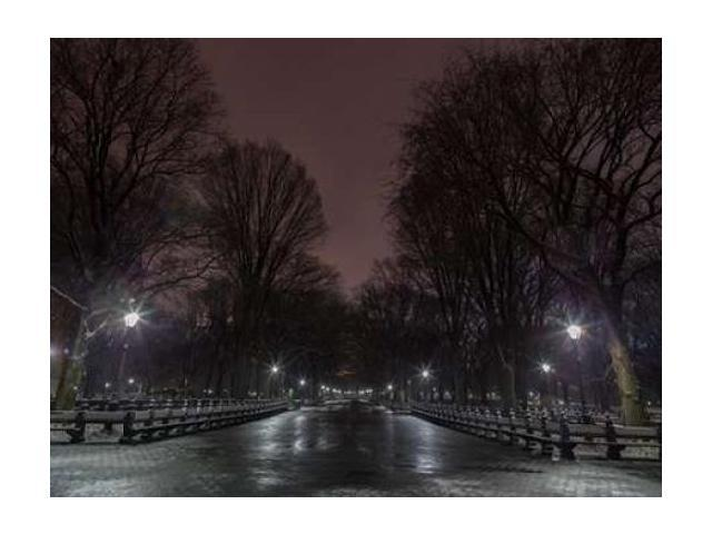 Central park at night New York Poster Print by Assaf Frank (18 x 24)