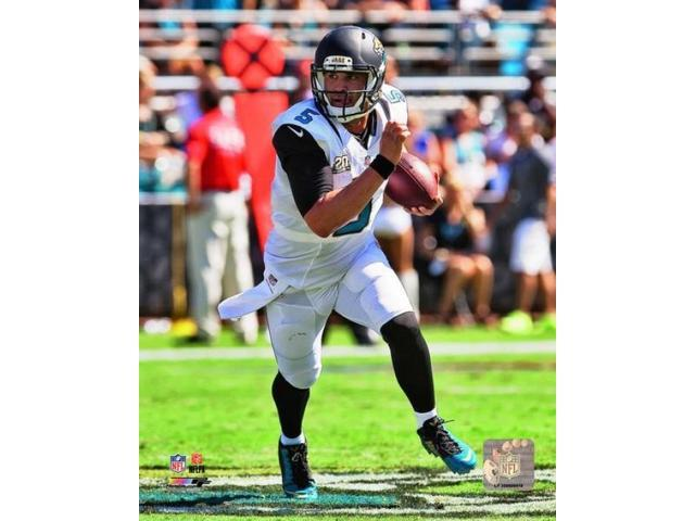 Blake Bortles 2014 Action Photo Print (8 x 10)