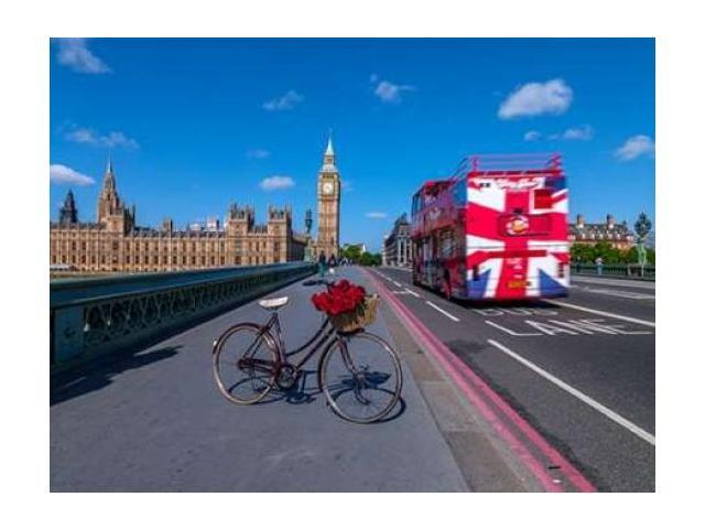 Bicycle with bunch of flowers on Westminster Bridge  London UK Poster Print by Assaf Frank (18 x 24)