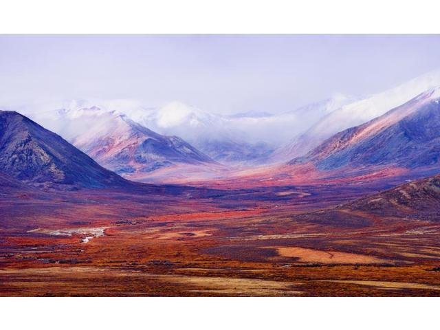 Tombstone Range And Fall Colours In Ogilvie Mountains Along Dempster Highway Tombstone Territorial Park Yukon Poster Print (18 x 11)