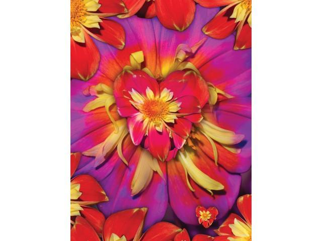 Loveflower Orangered Poster Print by Alixandra Mullins (12 x 16)